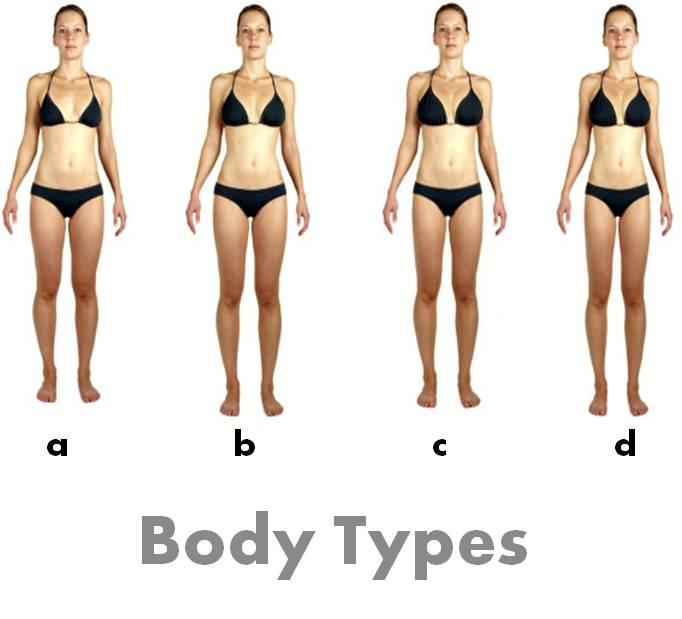 Average body type female
